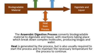 Flow of energy during anaerobic digestion in a biogas digester