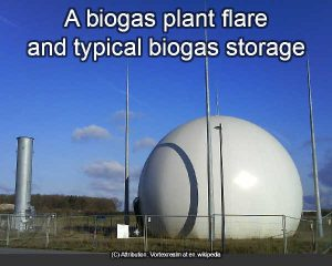 Gas storage at a biogas plant