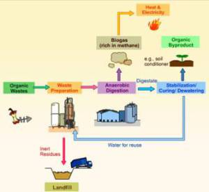 buying an anaerobic digestion plant