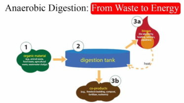 Biogas Digester Blog by Tyler