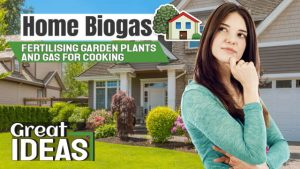 "Featured image with the text: ""Home Biogas fertilising garden plants and gas for cooking""."